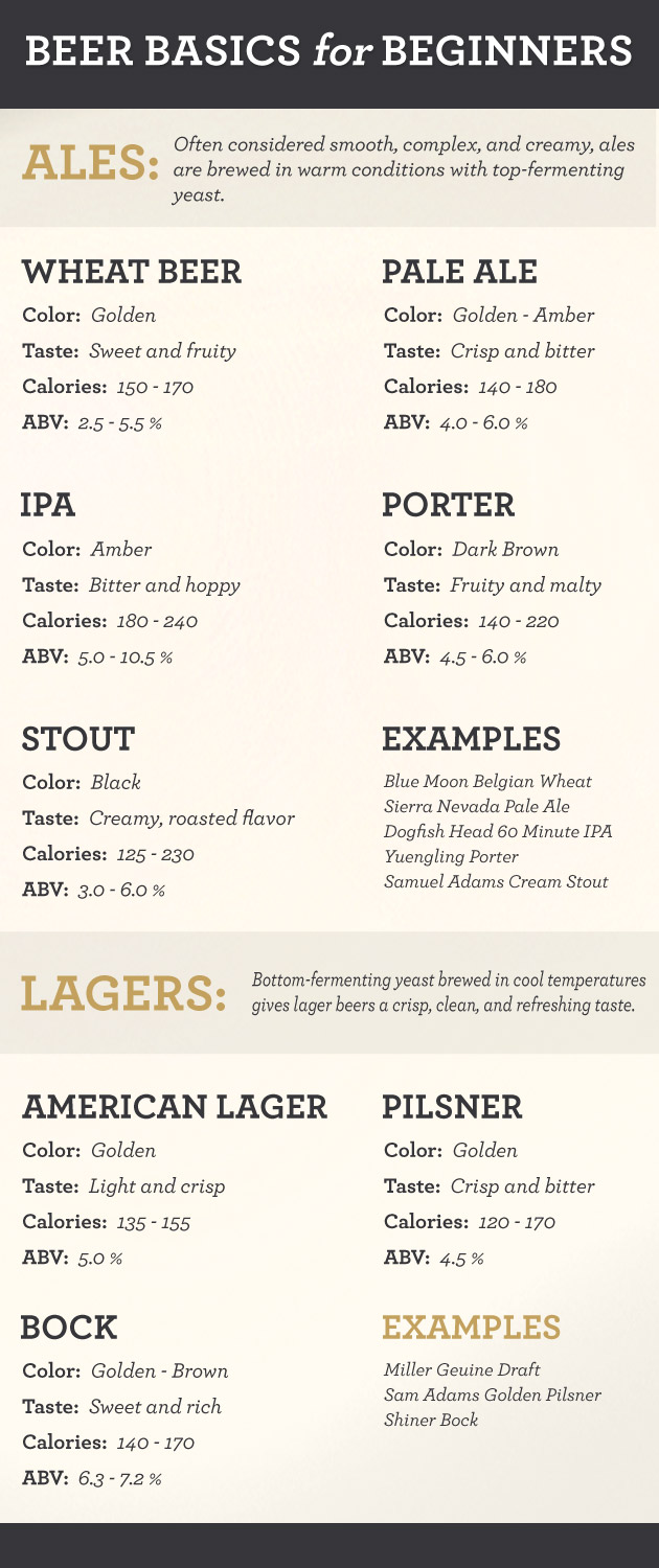 beginner's guide to beer